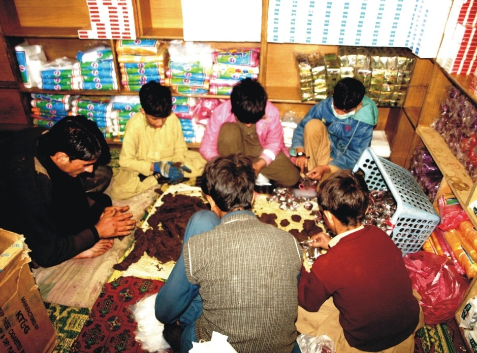 A group of children preparing packs of Naswar (a powdery drug) at a shop in Gilgit - Baltistan. The minor children are highly prone to various health related hazards in this environment, besides being under threat of addiction. The loss of GB's future at fast sprouting sweatshops is a serious issue demanding the society's attention. Photo: Farman Karim