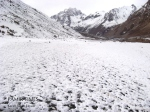 Snowfall at Chipursan Gojal (Hunza) (3)